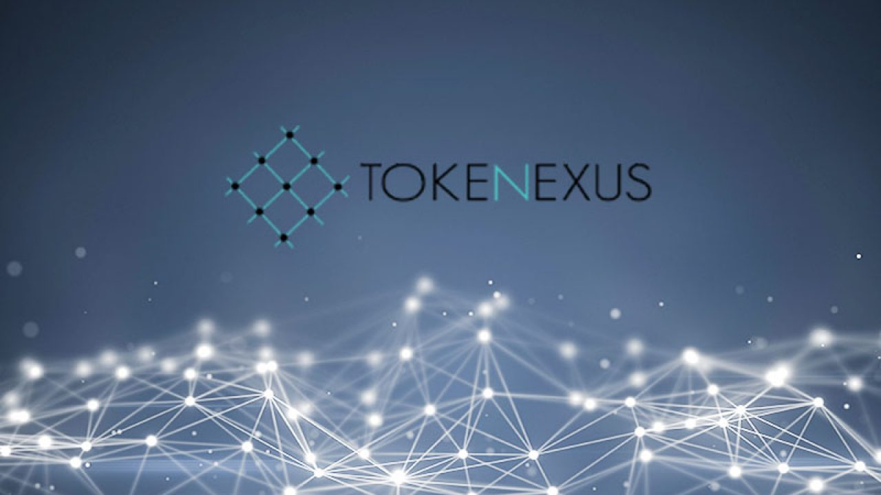 Read this article if you\'re looking for a Tokenexus Review based on objective and real data